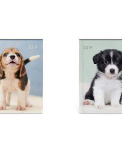 Agenda 11X15Cm My Favourite Hond Beagle
