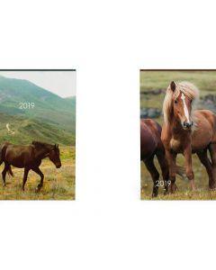 Agenda 11X15Cm My Favourite Paard Blauw