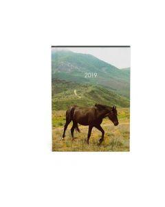 Agenda 11X15Cm My Favourite Paard Bruin