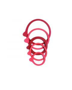 Weck Set 10 Ring 54X67