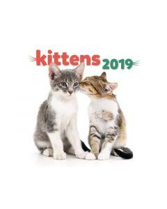 Kalender Kittens 30X30