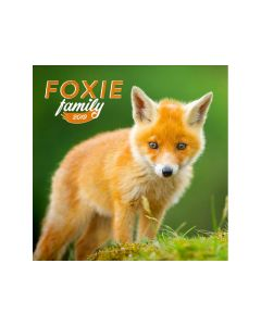 Kalender Foxie Family 30X30