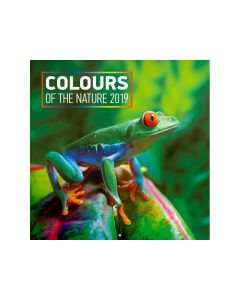 Kalender Colours Of The Nature 30X30