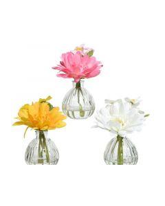 Pes Gerbera I Glass Vase 3Clas Assorted Dia13X15Cm