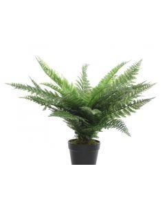Plc Fern In Pot Green 86X60Cm