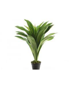 Plastic Bracaena In Pot Green 60Cm