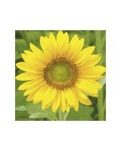 Servetten 33X33Cm 20St. Sunflower