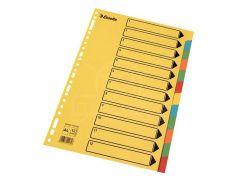 Index Karton 12 Tabs Felle Kleuren