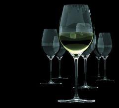 S&P Wijnglas Cuvee Wit Groot 46 Cl Set 6 Stuks