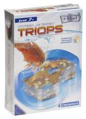 First discovery - triops waterdiertjes