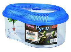 Terrarium pyrus plastic met deksel