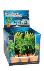 Aq.Plant Plastic Terra Cotta