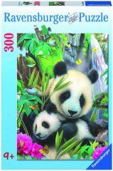 P 300St Lieve Panda