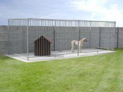 Honderennen 1.5M