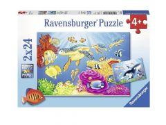 P 2X24 St Kleurrijke Onderwaterw.