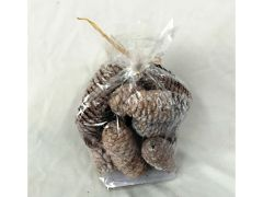 Pinecones In Bag (type 1)