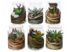 Plant Plastic Pot Glas Dia12.5X16Cm 6Assortiment Prijs Per Stuk