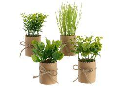 Kruiden Plastic Pot Papier M Naturel Strik 6X14Cm Groen 4Assortiment Prijs Per Stuk