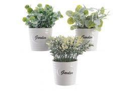 Plant Pe Pot Krmk Tekst 11X11X15Cm Groen 3Assortiment Prijs Per Stuk