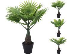 Palm 40Cm In Pot12.5X11Cm 40Cm 3 Assortiment Per Stuk