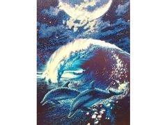 Rainbow Loom Crystal Art Dolfijnen Bij Maanlicht Portrait 40X50 Cm