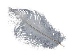Struisvogel Veren 28Cm Grijs 5St.