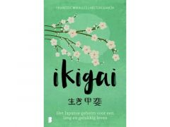 Ikigai (type 2)