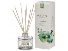 Bolsius Fragrance Diffuser 100Ml Gdr