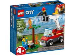 City 60212 Barbecuebrand Blussen