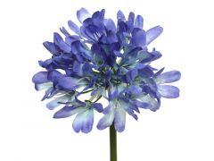 Pes Agapanthus On Stem Lilac Dia14X61Cm