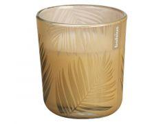 Glas Gevuld + Geur 80/73 Creme Brulee