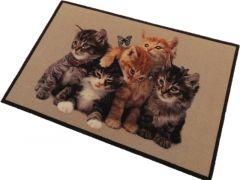 Deco Star Dieren Groep Jonge Katten 50X80