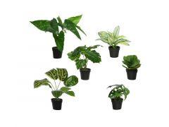 Plant Plastic Pot Groen 18X18X22Cm Small