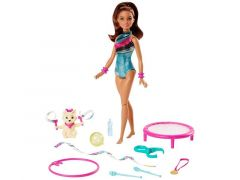 Barbie Dreamhouse Adventures Spin & Twirl Gymnast Doll + Acc.