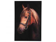 Canvas Horse Classic 60X4,5Xh90Cm