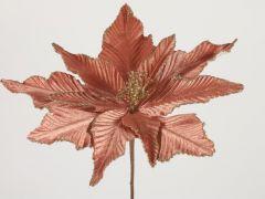 Euphorbia A Roze 15X5X48Cm