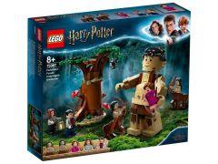 Harry Potter 75967 Het Verboden Bos: Omber'S Ontmoeting Met Groemp