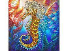 Rainbow Loom Crystal Card Kit Seahorse 18X18Cm