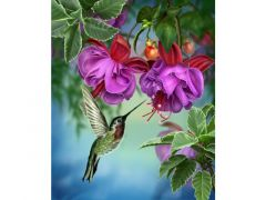 Rainbow Loom Crystal Art Kit Hummingbird 50X40Cm