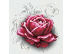 Rainbow Loom Miniart Crafts Rose Drawing 40X40Cm