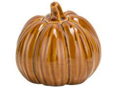 Pompoen Pumpkin Skin Roest 6,5X6,5Xh6,5C