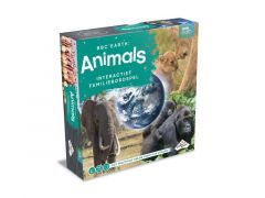 Identity Games Bbc Animals