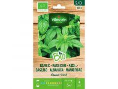 Basilicum Grand Vert Bio D