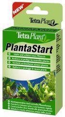 Tetra plant plantastart 12 tabl
