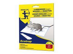 Ecotrap Lijmbord Tegen Muizen En Insecten