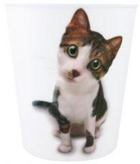 DUSTBIN CAT 2