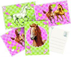 Paarden Uitnodigingskaarten 6Stuks