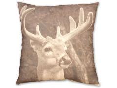 Picture Kussen 45X45Cm Deer