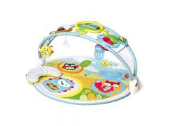 Skip Hop Explore & More Activity Gym