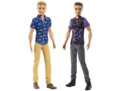 Barbie Fashionista Boy Doll Asst.